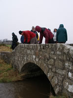 Looking for masons' marks on a bridge