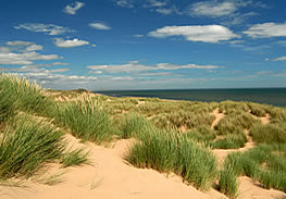 St Cyrus Beach and National Nature