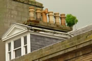 Historic Building Intervention Programme - vegetation growing on roof